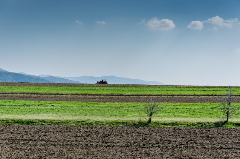 Tracciabilità delle filiere agroalimentari