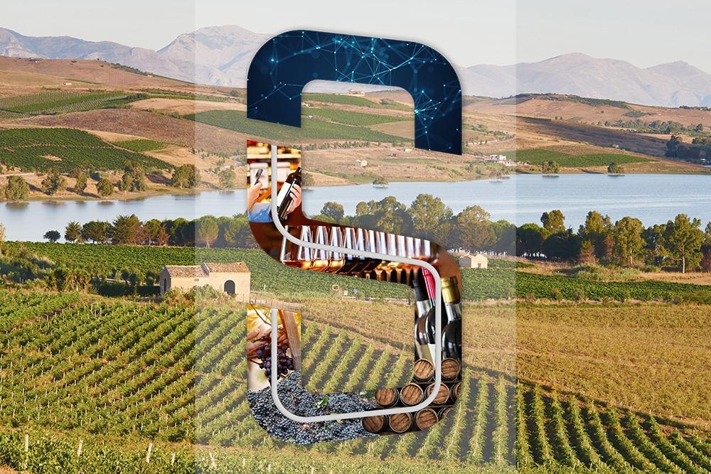 Tracciabilità del vino con Seedsbit, articolo su Oinos